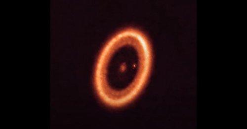 Erste mondbildende Scheibe um Exoplaneten nachgewiesen