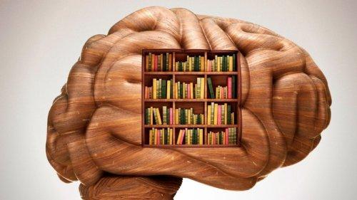 Gedächtnis verbessern: Forscher verraten nützlichen Trick