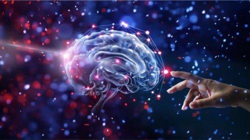 Die Intelligenz der Menschheit – haben wir unseren Zenit erreicht?