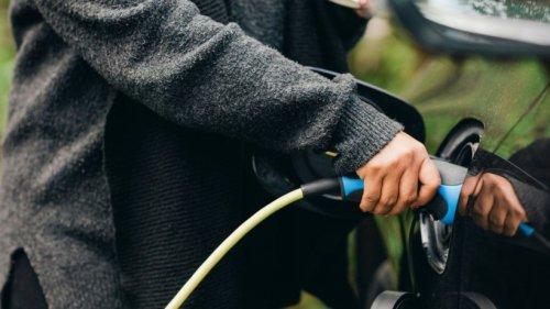 """Streit wegen Elektroautos: Experten liefern """"hochgradig peinliches"""" Schreiben"""
