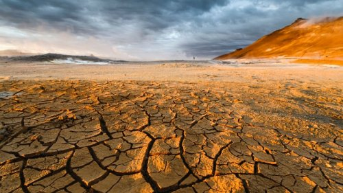 """""""Schreckliche Zukunft"""" – das sagen Experten zum Zustand unserer Erde"""