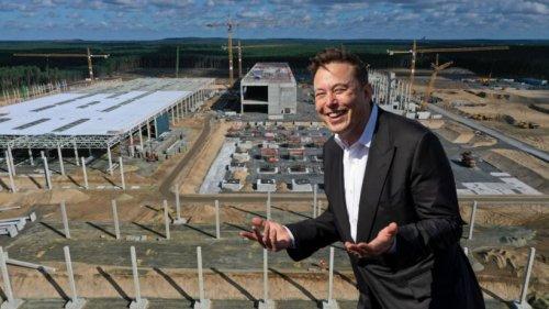 Tesla: Elon Musk will mehr Käufer – und wählt ungewöhnliche Methode für Gigafactory bei Berlin