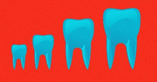 New Treatment Makes Teeth Grow Back