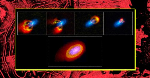 Study: An Extra Pinch of Chaos, and BAM, New Planets