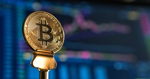 This revolutionary crypto trading platform lets you mimic its top-performing investors