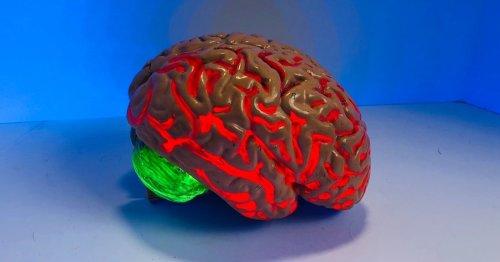 Your brain doesn't need more sleep, it needs better sleep