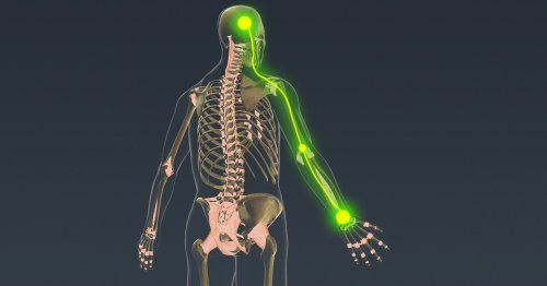 Tiny Neural Implant Could Give Spinal Injury Patients Control Over Their Own Limbs Again