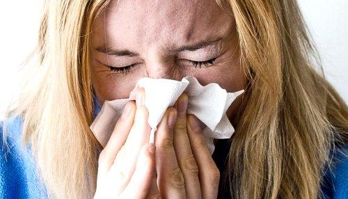 What triggers a sneeze reflex? - Futurity