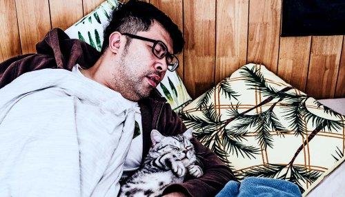 Naps don't actually relieve sleep deprivation - Futurity