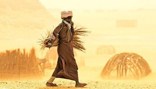 Dusty air ups infant mortality in Sub-Saharan Africa - Futurity