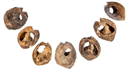 Ancient beads are the earliest sign of communication with fashion - Futurity