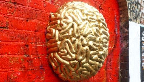 COVID-19 may alter gray matter in the brain - Futurity