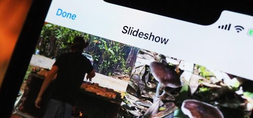 iOS 14 Makes It Easier to Turn Albums into Slideshows from the Photos App
