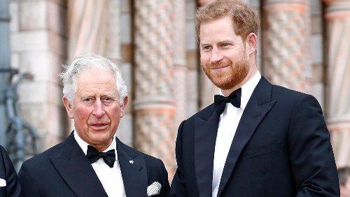 In neuem Interview holt er gegen Prinz Charles aus
