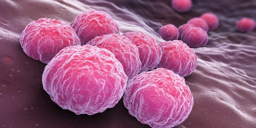 STDs reach all-time high for sixth consecutive year in the US. Is your state in the top 10?