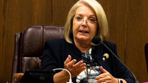 The one true thing Arizona Senate President Karen Fann said about the sham election audit