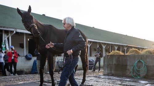 Kentucky Derby winner Bob Baffert accused of doping after horse tests positive for betamethasone