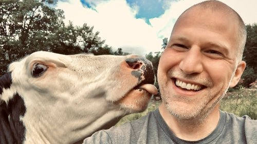 White extremism is winning in my Vermont town. I'm selling my animal sanctuary and moving.