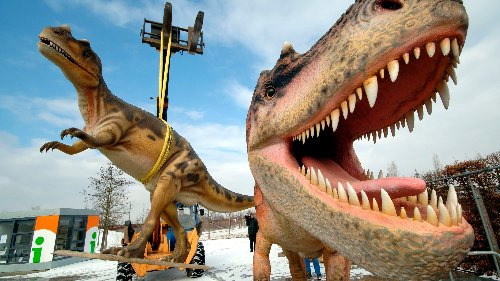 T. rex were once so common on Earth you could probably find 2 roaming a Washington DC-sized area, study suggests
