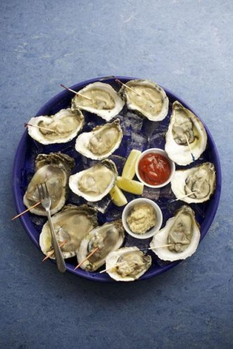 How Many Chews Are in an Oyster?