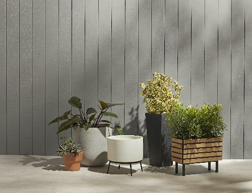 The Potted Garden: A Planter for Every Purpose, from Rejuvenation - Gardenista