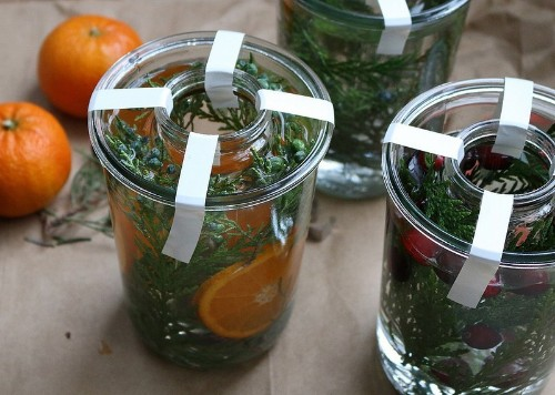 DIY: Botanical Ice Lanterns - Gardenista