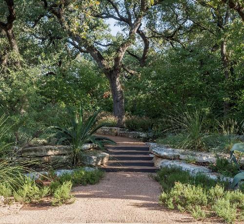 Hardscaping 101: Rain Gardens - Gardenista