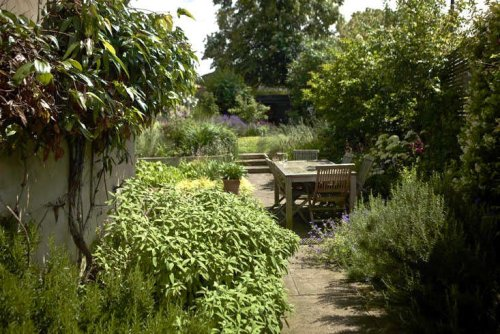 """Lessons Learned: From """"Neglected"""" Slope to Charming Garden, in South London - Gardenista"""