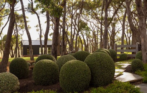 Landscape Visit: Manicured—and Wild, on Australia's Mornington Peninsula - Gardenista