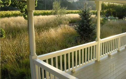 Leaves of Grass: 9 Ways to Create Curb Appeal with Perennial Grasses - Gardenista