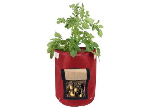 10 Easy Pieces: Potato Growing Kits - Gardenista