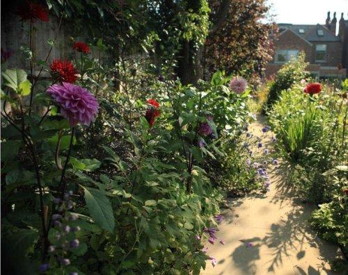 Dahlia Days: Sam McKnight's Spectacular September Garden - Gardenista