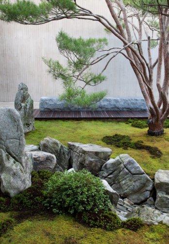Designer Visit: A Gray and Green Garden at Tiger Glen - Gardenista
