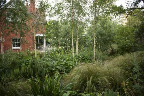 Garden Designer Visit: Jinny Blom in Primrose Hill - Gardenista