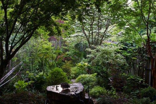 Garden Visit: At Home With Canada's Favorite Garden Writer - Gardenista