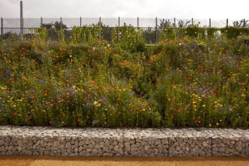 Olympic Park: A New Kind of English Garden - Gardenista