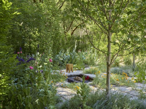 A Garden Grows in Quarantine: 'Cultivated Wildness' in a Landscape Architect Couple's Napa Home - Gardenista