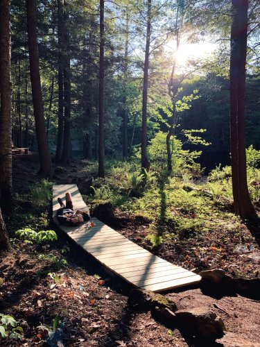 A DIY Boardwalk at an Off-the-Grid Cabin (That Only Took One Afternoon) - Gardenista