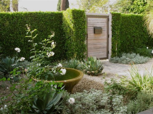 LA Confidential: A Private Courtyard Garden Goes Luxe on a Budget - Gardenista