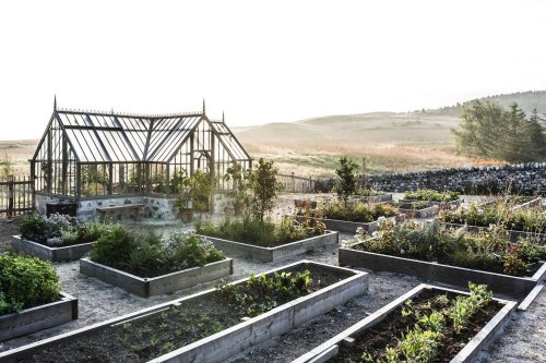 10 Ideas to Steal from Organic Gardens Around the World - Gardenista