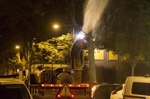 Gavà realizará fumigaciones en árboles los días 10 y 11, consulta las calles y recomendaciones