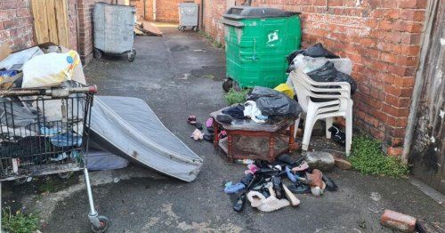 Delivery driver in bin plea after alley left packed with rubbish
