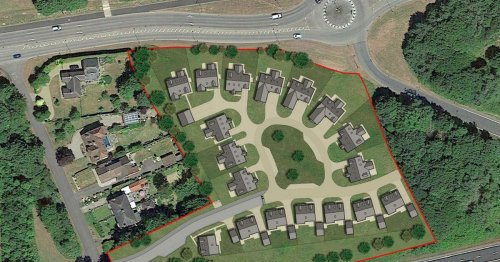 Decision on bungalows plan which would see hectare of trees cut down