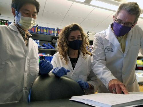 Univ. of Washington and Sana researchers use gene editing to prep stem cells for heart repair