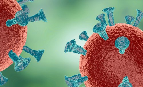 Eminent MIT Scientists Defend Controversial SARS-CoV-2 Genome Integration Results