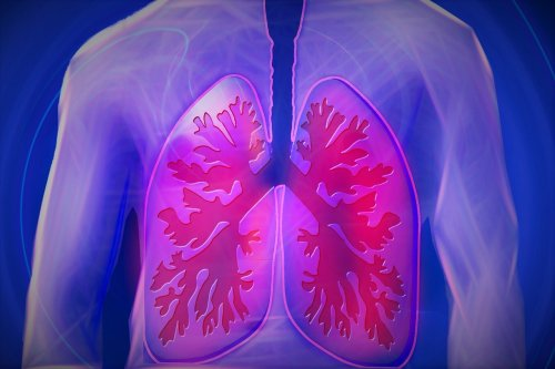Key to Limiting Mucus Production in Lung Disease Identified