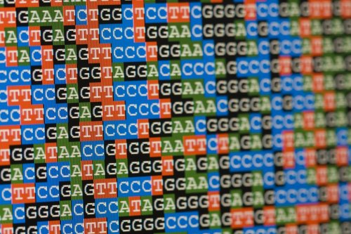 Could We Store All of the World's Data in a Coffee Mug Full of DNA?