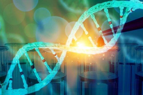 SNP-Chip: CRISPR-Based Transistor Detects Single Point Mutations