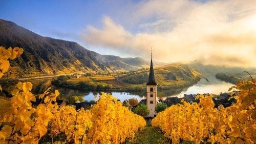 Mal wild, mal majestätisch: Die zehn schönsten Flüsse Deutschlands