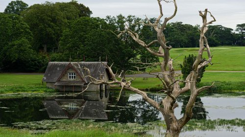 Irland per Rad entdecken: Eine Reise auf dem neuen Royal Canal Greenway